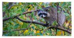 Spokane Raccoon Beach Towel by Inge Johnsson