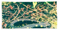 Spotted Salamander Retro Beach Towel