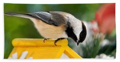 Spring Chickadee Beach Towel