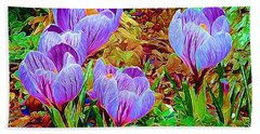 Spring Crocuses Beach Sheet