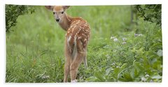 Spring Fawn Beach Towel by Jeannette Hunt