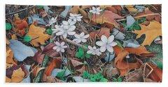 Spring Forward Beach Sheet by Pamela Clements
