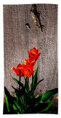 Beach Towel featuring the photograph Spring In The City by Donna Lee