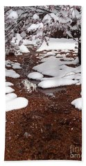Beach Towel featuring the photograph Spring Into Winter by Kerri Mortenson