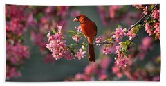 Spring Morning Cardinal Beach Towel