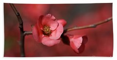 Spring Richness - Flowering Quince Beach Towel