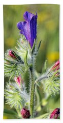 Beach Sheet featuring the photograph Spring Wild Flower by George Atsametakis