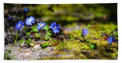 Spring Wild Flowers Beach Sheet