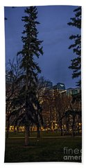 Spruce Tree At The Square Beach Towel