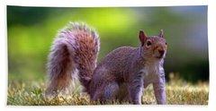 Squirrel On Grass Beach Towel