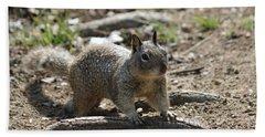 Squirrel Play  Beach Sheet
