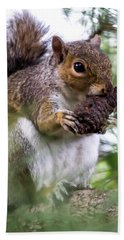 Squirrel With Pine Cone Beach Sheet