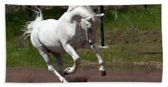 Beach Towel featuring the photograph Stallion D4052 by Wes and Dotty Weber