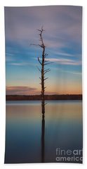 Stand Alone 16x9 Crop Beach Towel