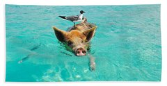 Staniel Cay Swimming Pig Seagull Fish Exumas Beach Towel