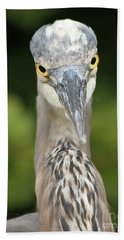 Beach Towel featuring the photograph Staredown by Heather King