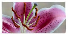 Stargazer Lily Beach Sheet