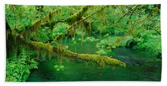 Stream Flowing Through A Rainforest Beach Towel by Panoramic Images