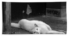Street Cat Beach Towel