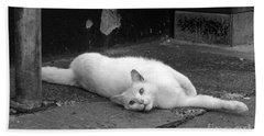 Street Cat Beach Sheet