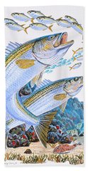Striped Bass Rocks Beach Towel by Carey Chen