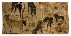 Study Of Hounds, 1616 Beach Towel