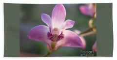 Beach Sheet featuring the photograph Stunning Bush Orchid by Leanne Seymour