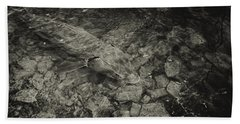 Sturgeons On The Wolf Beach Towel