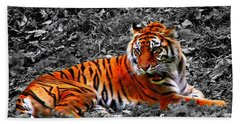 Beach Sheet featuring the photograph Sumatran Tiger by Davandra Cribbie
