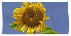 Sunflower At Latrun Beach Towel