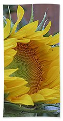 Sunflower Awakening Beach Sheet by Kay Novy