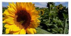 Sunflower Glow Beach Sheet