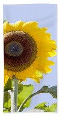 Sunflower In The Blue Sky Beach Towel by David Millenheft