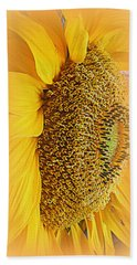 Sunflower Beach Sheet by Kay Novy