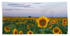 Sunflowers At Sunrise Beach Towel