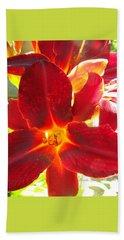 Beach Sheet featuring the photograph Sunlight And Daylilies A Match Made In Heaven by Brooks Garten Hauschild