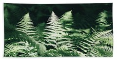 Beach Towel featuring the photograph Sunlight And Shadows-algonquin Ferns by David Porteus