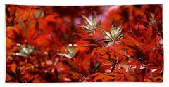 Sunlit Japanese Maple Beach Towel