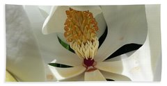 Sunny And Shy Magnolia Beach Towel