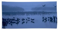 Sunrise Over The Hula Valley Israel 4 Beach Towel