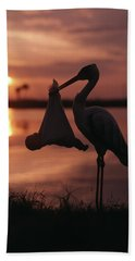 Sunrise Silhouette Of Stork Carrying Beach Towel
