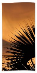 New Orleans Sunset Of The Oasis In The Sky Of Louisiana Beach Towel by Michael Hoard