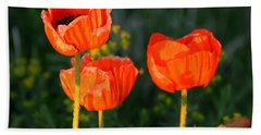 Beach Sheet featuring the photograph Sunset Poppies by Debbie Oppermann
