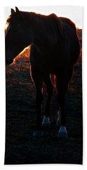 Beach Towel featuring the photograph Sunset Splendor by Robert McCubbin