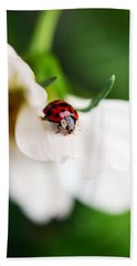 Sunshine And Petal Rest Beach Towel
