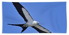 Swallow-tailed Kite Beach Sheet
