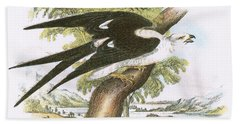 Swallow-tailed Kite Beach Towel