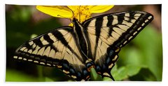 Swallowtail Butterfly Beach Sheet