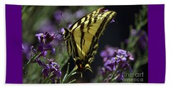 Swallowtail Butterfly On Lavender  Beach Towel