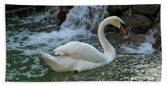 Swan A Swimming Beach Towel